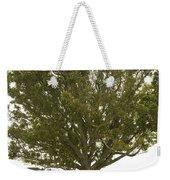 Hugging The Fairy Tree In Ireland Weekender Tote Bag