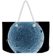 Human Egg Cell And Sperm Cells Esem Weekender Tote Bag