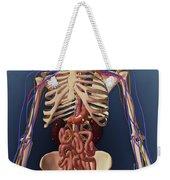 Human Skeleton Showing Kidney, Stomach Weekender Tote Bag