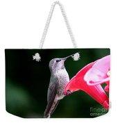 Hummingbird 23 Weekender Tote Bag