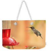 Hummingbird And Feeder Weekender Tote Bag