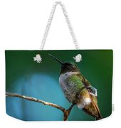 Hummingbird At Rest Weekender Tote Bag