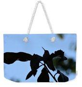 Hummingbird At Sunrise Silhouette Weekender Tote Bag