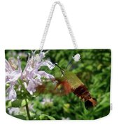 Hummingbird Clear-wing Moth At Monarda Weekender Tote Bag