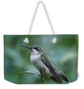 Hummingbird Close-up Weekender Tote Bag