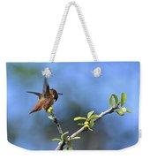 Hummingbird Feeling Frisky 1 Weekender Tote Bag
