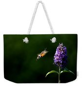Hummingbird Hawk Moth - Three Weekender Tote Bag