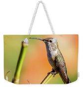 Hummingbird Perched II Weekender Tote Bag