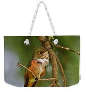 Hummingbird With An Itch Weekender Tote Bag