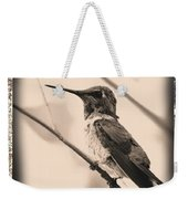 Hummingbird With Old-fashioned Frame 3 Weekender Tote Bag