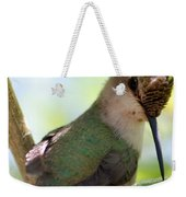 Hummingbird With Small Nest Weekender Tote Bag