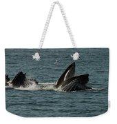 Humpback Whales Megaptera Novaeangliae Weekender Tote Bag
