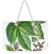 Humulus Lupulus, Common Hop Or Hop Weekender Tote Bag