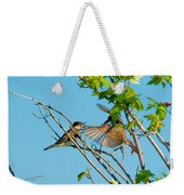 Hungry Birds In Tree Close-up Weekender Tote Bag