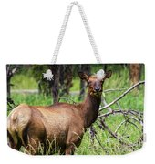 Hungry Elk Weekender Tote Bag