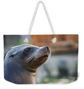 Sea Lion Weekender Tote Bag