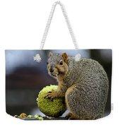 Hungry Squirrel 1 Weekender Tote Bag