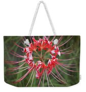 Hurricane Lily Weekender Tote Bag