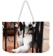 Husky Leo Focused Weekender Tote Bag