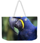 Hyacinth Macaw Weekender Tote Bag