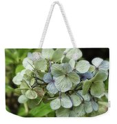 Hydrangea  In Purple And Pale Yellow Weekender Tote Bag