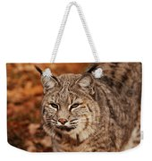 I Am One Good Looking Bobcat Weekender Tote Bag