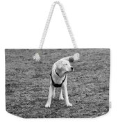 I Don't Know How To Fetch Yet Weekender Tote Bag