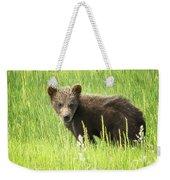 I Love Me A Teddy Bear Weekender Tote Bag by Belinda Greb