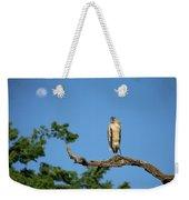 I See The Moon Weekender Tote Bag