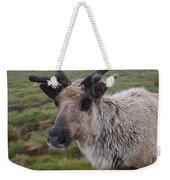 I Think It Might Reindeer Weekender Tote Bag