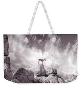 Ibex -the Wild Mountain Goats In The El Torcal Mountains Spain Weekender Tote Bag