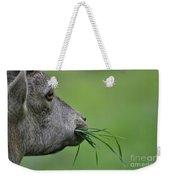 Ibex Weekender Tote Bag