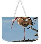 Ibis At  Rest Weekender Tote Bag