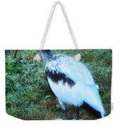 Ibis Weekender Tote Bag