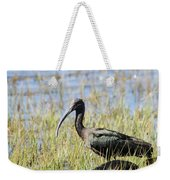 Ibis Looking Around Weekender Tote Bag