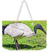 Ibis Looking For Food Weekender Tote Bag