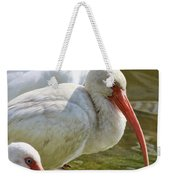 Ibis Three Weekender Tote Bag