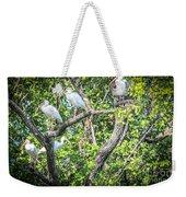 Ibises In A Tree Weekender Tote Bag