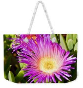Ice Plant Blossom Weekender Tote Bag by Kelley King