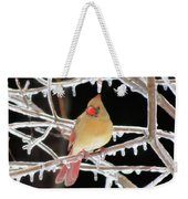 Ice Princess Weekender Tote Bag