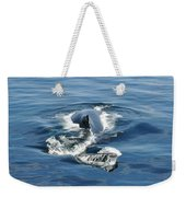 Iceberg And Humpback Weekender Tote Bag