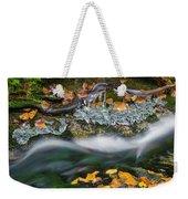 Icy Foliage Stream Weekender Tote Bag