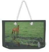 Idaho Farm Horse1 Weekender Tote Bag