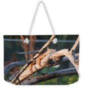 Igauna On A Stick Weekender Tote Bag