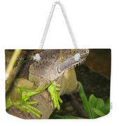 Iguana - A Special Garden Guest Weekender Tote Bag