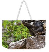 Iguana At Talum Ruins Mexico 2 Weekender Tote Bag