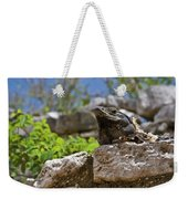 Iguana At Talum Ruins Mexico Weekender Tote Bag
