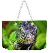 Iguana Stare Weekender Tote Bag