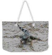 Iguana With A Striped Tail On A Sand Beach Weekender Tote Bag