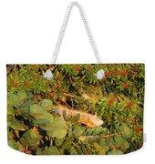 Iguanas Weekender Tote Bag